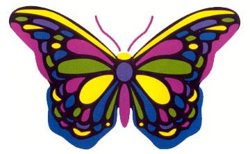 Multicolor Butterfly Sticker Woodstock Trading Company